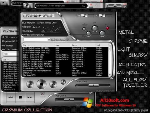 لقطة شاشة RadioSure لنظام التشغيل Windows 10