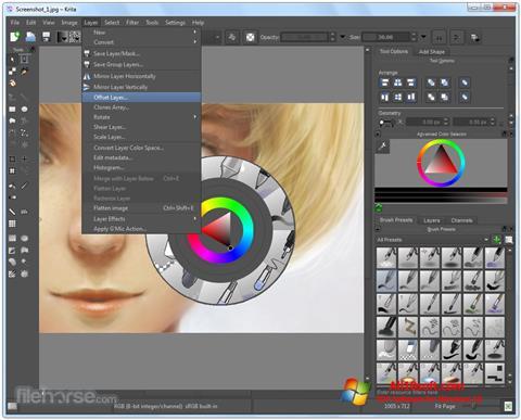 لقطة شاشة Krita لنظام التشغيل Windows 10